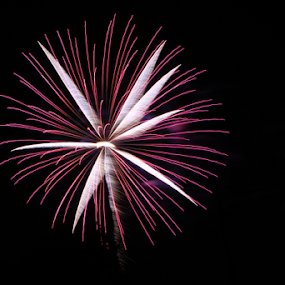 Criss Cross by Dave Dabour - Public Holidays July 4th ( old towne festival, fireworks, 2011, fire, new year, dipawali, diwali, 2014 )