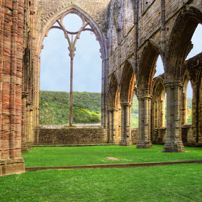 Tintern's Great Window by Skye Ryan-Evans - Buildings & Architecture Public & Historical ( religious orders, cistercian monastery, monmouthshire wales, famous places, places of worship, religion, british history, welsh english border, tintern abbey, monastery, welsh abbey, historic site, benedictine monastery, abbey ruins, famous sites, welsh history, abbey, ancient ruins )