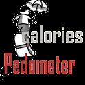 calorie pedometer
