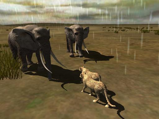 【免費冒險App】Africa Wild-APP點子
