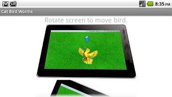 Screenshot of Cat Bird and Worms