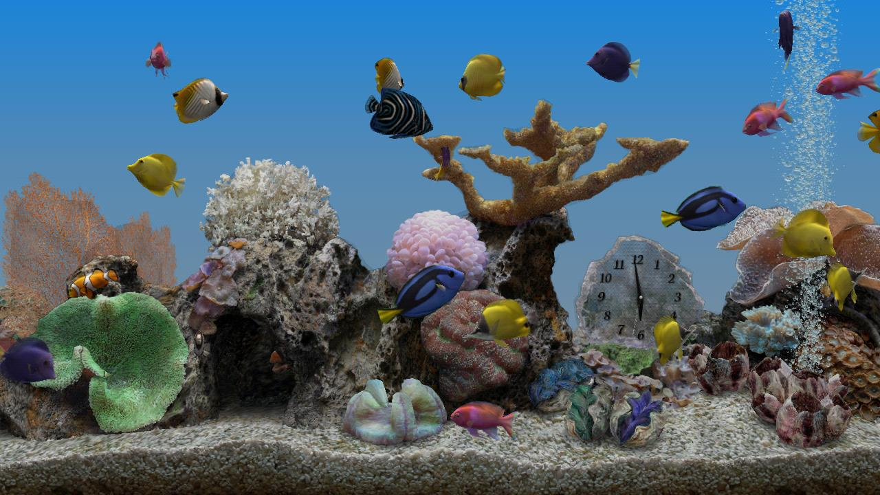 Marine Aquarium 3.2 - Android Apps on Google Play