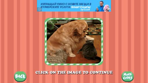 Live Animals Puzzle