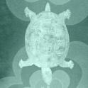 Retro Waggle Turtle icon
