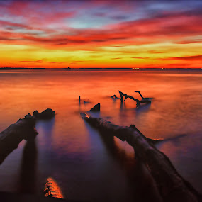Waiting for the Sun by James Gramm - Landscapes Sunsets & Sunrises ( water, sky, color, trees, long exposure, sunrise, beach, river,  )