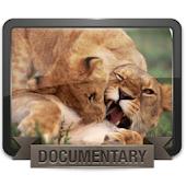 أفلام وثائقية بجودة عالية