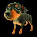 강아지 웃음 icon