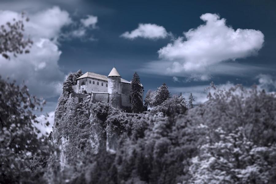 Bled cstle - Slovenia by Dominik Konjedic - Buildings & Architecture Public & Historical ( infrared, slovenia, bled, castle )