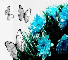 Screenshot of Butterfly Wallpapers Share