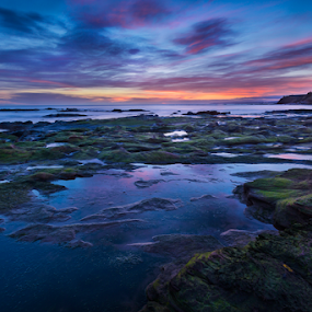 Seacliff Beach at Sunrise by Philip Cormack - Landscapes Sunsets & Sunrises ( water, clouds, seacliff, scotland, peaceful, north berwick, lothian, waves, beautiful, unitedd, scottish, sea, beach, great, kingdom, serene, sunset, sunrise, east, stunning, rocks, britain )