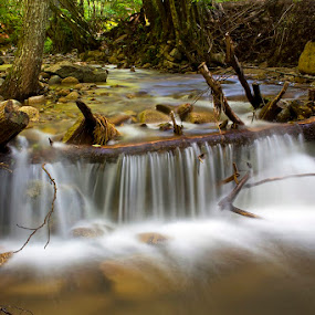 by Siniša Almaši - Nature Up Close Water ( water, wood, nature, foret, cascade, white, stone, river,  )