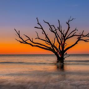 Sunrise on at Botany Bay by Charles Hardin - Landscapes Beaches ( the bone yard, charles k. hardin photography, botany bay, edisto island, sunrise )
