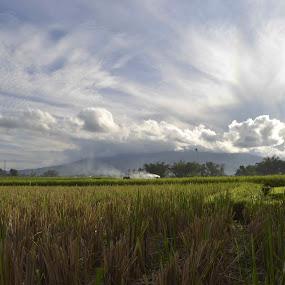 pecah langit dari gunung Singgalang by Alvi Eko Pratama - Landscapes Prairies, Meadows & Fields ( clouds, green, white, landscape, fields )