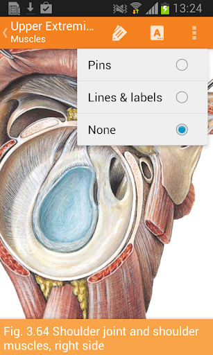 Sobotta Anatomy Atlas - Apps on Google Play