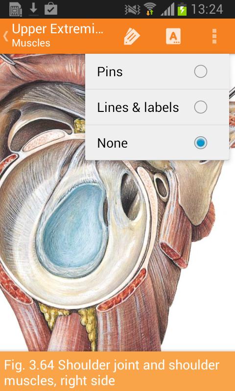 Sobotta Anatomy Screenshot 6