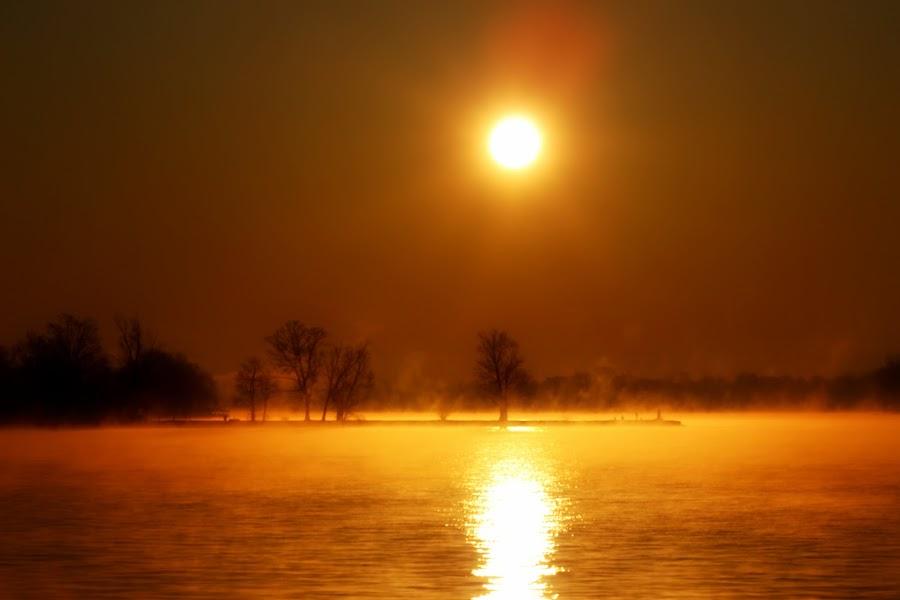golden rise mist by Scott Bennett - Landscapes Sunsets & Sunrises (  )