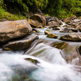 Creek by Jay Chen - Landscapes Waterscapes ( stream, nature, flowing, creek, river )