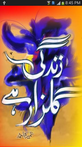 Zindgi Gulzar Hai- Umera Ahmad