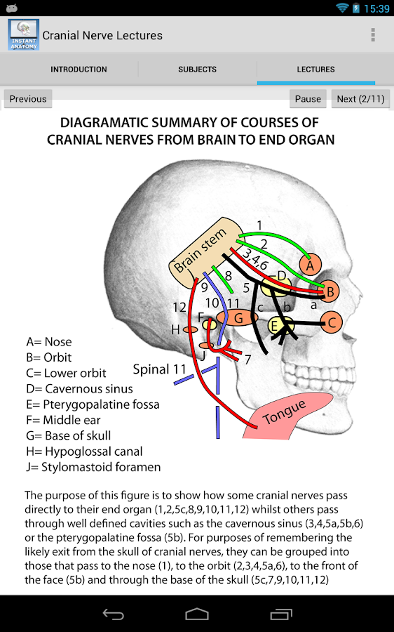 Anatomy Cranial Nerve Lectures- screenshot