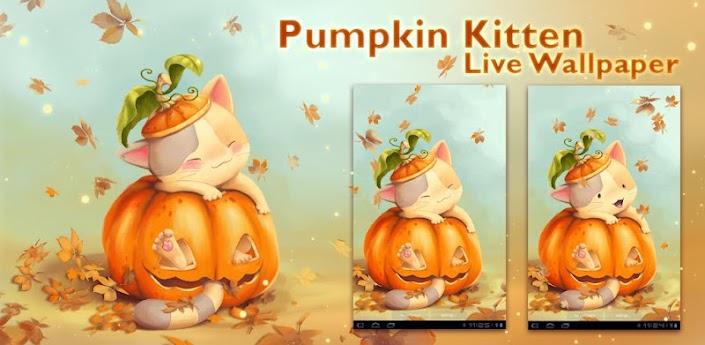 Pumpkin Kitten Live Wallpaper apk