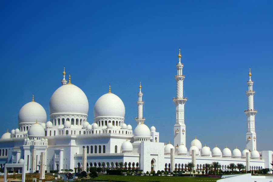 The Grand Mosque by Dhvani Rajput - Buildings & Architecture Places of Worship ( mosque, white, architecture, travel&tourism )