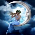 Fairy Puzzle icon