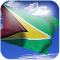 3D Guyana Flag + icon