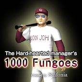 1000 Fungoes of Baseball