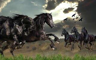 Screenshot of Wild Horses Live Wallpaper