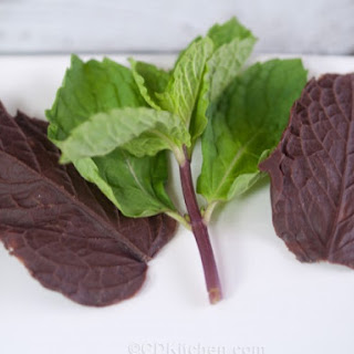 Chocolate Mint Leaves.