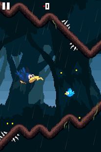Disturbed-Bird