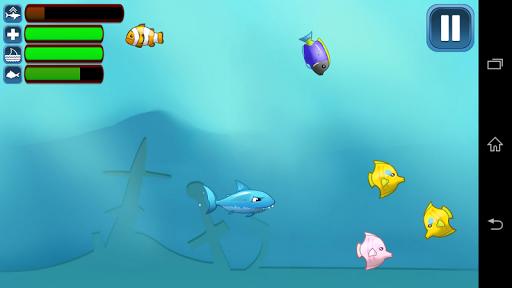 鲨鱼反对鱼