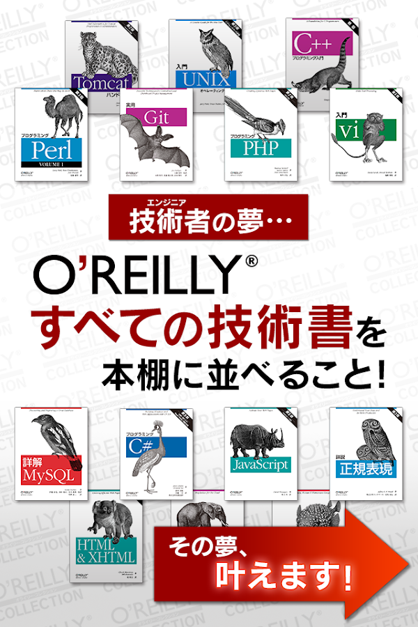O'REILLY COLLECTION- screenshot