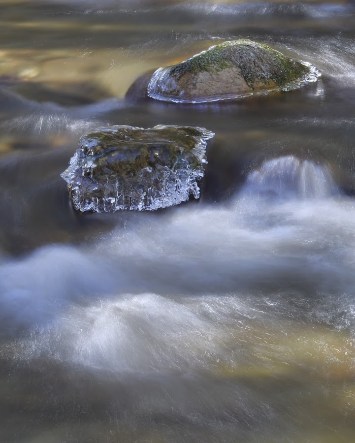 Winter at Clark's Creek by Willis Jones - Nature Up Close Water ( water, cold, blue, ice, creek, rocks )