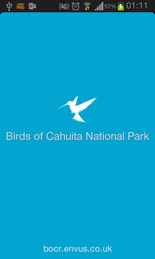 Birds of Cahuita National Park