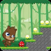 Jungle Bear