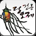 강릉단오제 icon