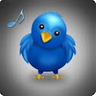 Crazy Bird Ringtone icon