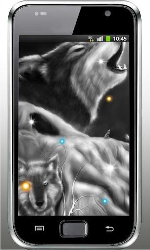 Wolf Sounds HD live wallpaper