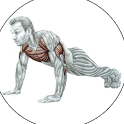 Качаем мышцы дома icon