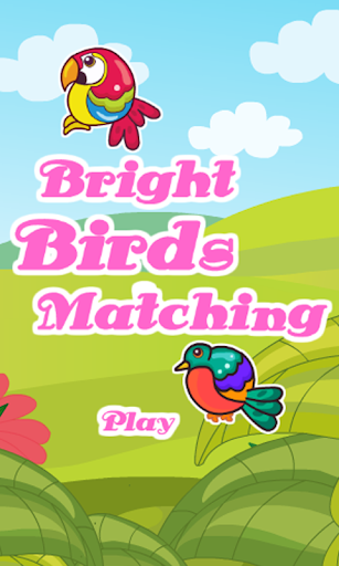 Bright Birds Matching
