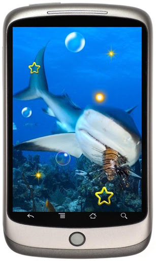 Shark Great Collection HD LWP
