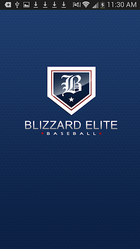 Blizzard Elite Baseball