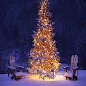 Top Christmas Wallpaper icon