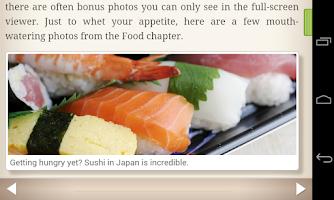 Screenshot of Human Japanese Lite