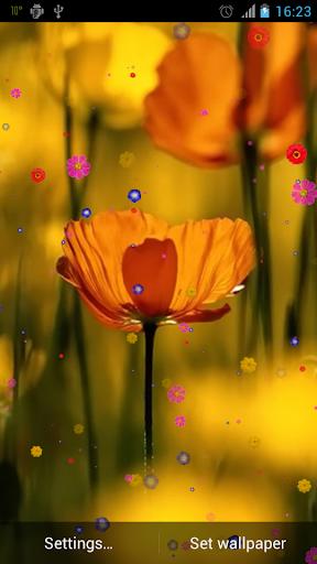 花動態壁紙