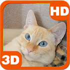 Awakened Cute Cat at Home icon