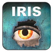 IRIS Fire Investigations