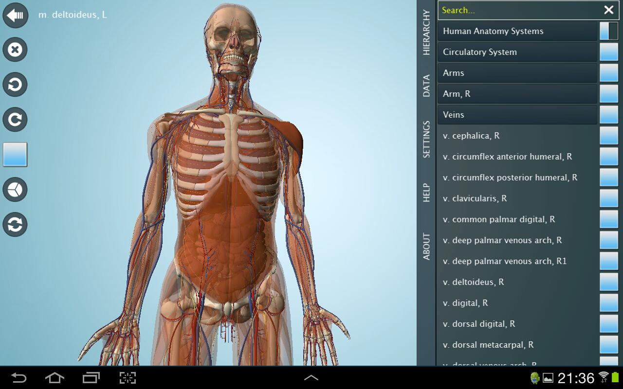 Anatomy 3d pro anatronica android apps on google play 3d application
