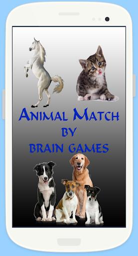 Animal Match Brain Game